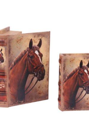 Boek paard