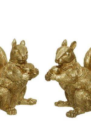 Eekhoorn goud